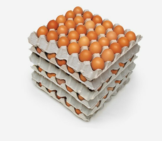 5 trays of 30 eggs stacked
